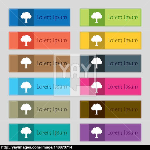 Tree, Forest Icon Sign Set Of Twelve Rectangular, Colorful