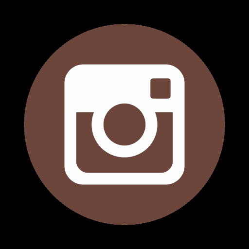 Instagram Icon Vector Lovely List Of Synonyms And Antonyms