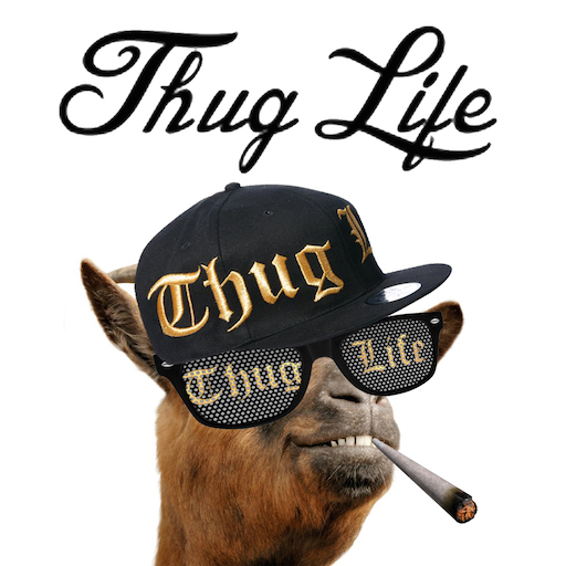 Thug Life Maker Brings Unique Video Editing Features To Ios Prmac