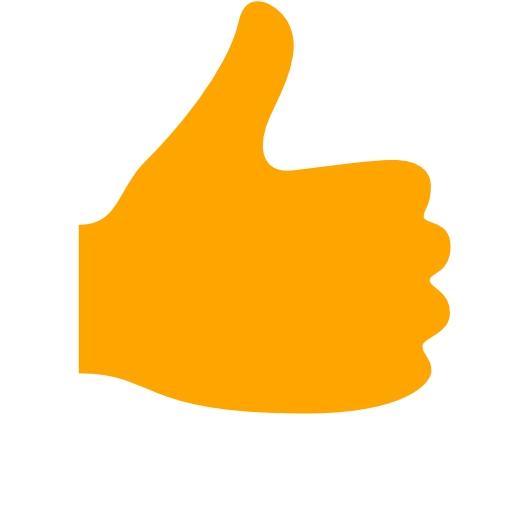 Orange Thumbs Up Icon