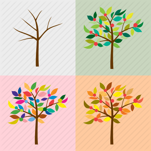 Bare Tree, Four Seasons, Nature, Season, Seasonal, The Four