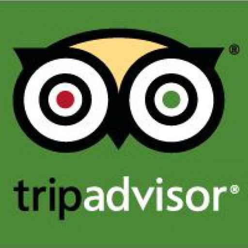 Tripadvisor Travel Massive