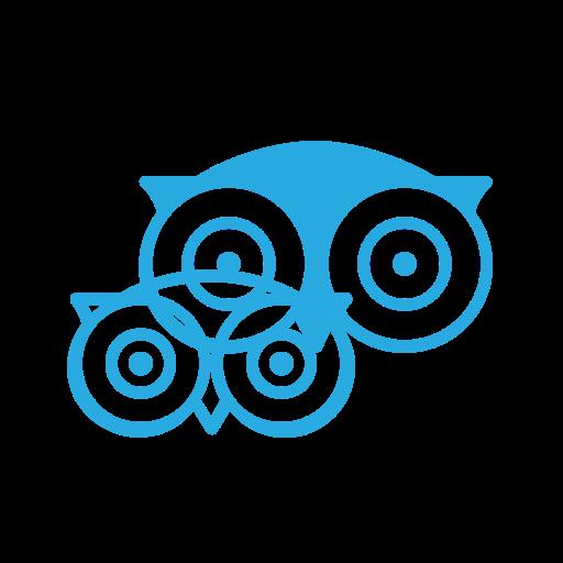 Tripadvisor, Media, Logo, Social Icon