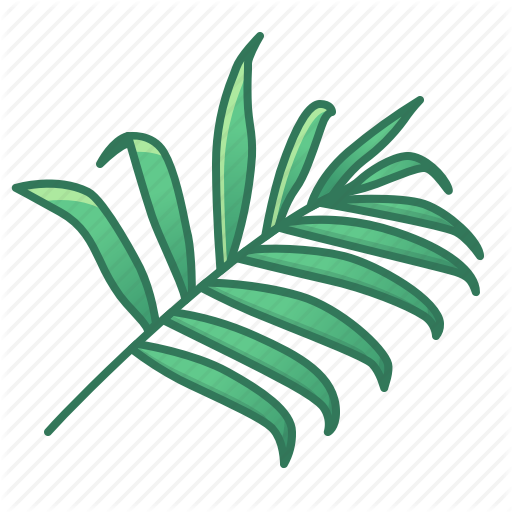 Bamboo, Green, Icons, Leaf, Leaves, Nature, Palm, Tropic, Tropical