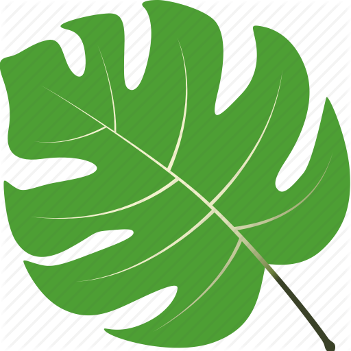 Leaf, Leaves, Maple, Nature, Tree, Tropical Icon