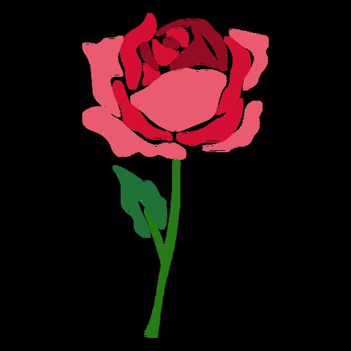Blooming Rose Flower Icon Flower