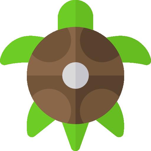 Turtle Icon Pets Shop Freepik