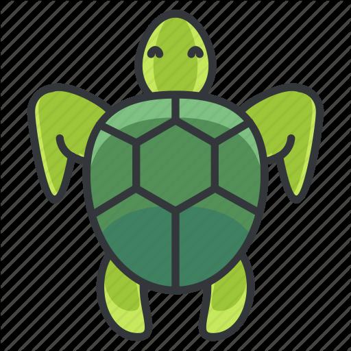 Animal, Animals, Marine, Nature, Ocean, Pet, Turtle Icon