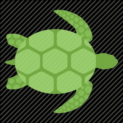 Marine Turtle, Sea Animal, Sea Turtle, Tortoise, Turtle Icon