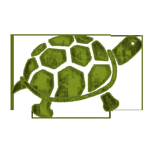Symbol Turtle Icon