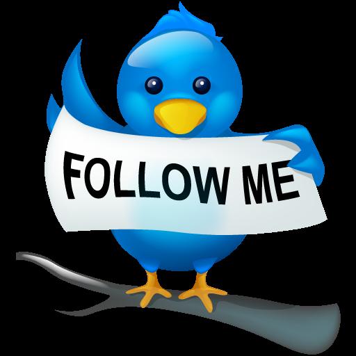 Social, Twitter, Bird, Tweet, Me, Social Media, Logo, Follow Icon