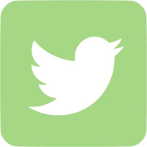 Guacamole Green Twitter Icon