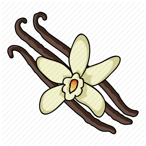 Cooking, Eco, Food, Plant, Seasoning, Spice, Vanilla Icon