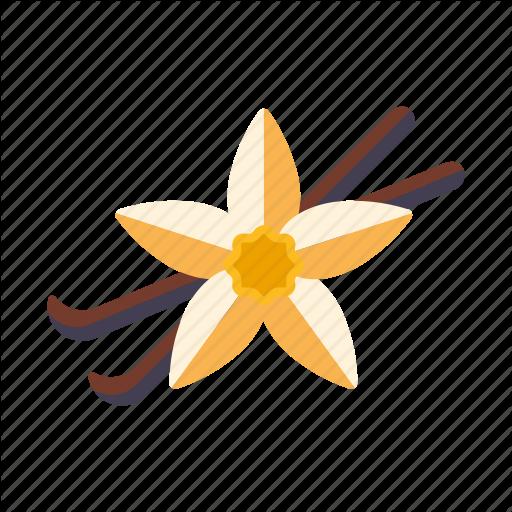 Flower, Food, Ingredients, Pod, Seasoning, Spices, Vanilla Icon