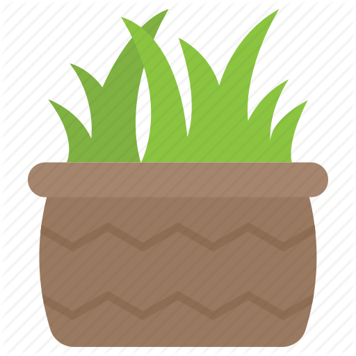 Agave Pot, Aloe Vera, Haworthia, Plant, Succulent Icon