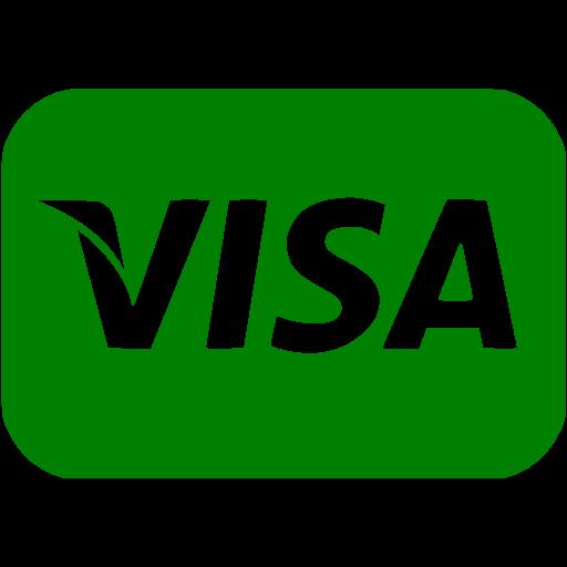 Green Visa Icon