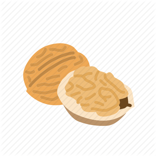 Food, Kernel, Nut, Nut Shell, Nuts, Walnut Icon