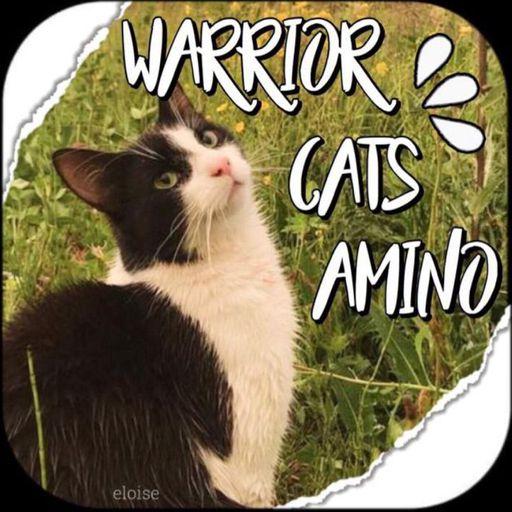 About Warrior Cats Amino Amino