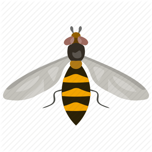 Bumble Bee, Flying Insect, Honey Bee, Insect, Wasp Icon