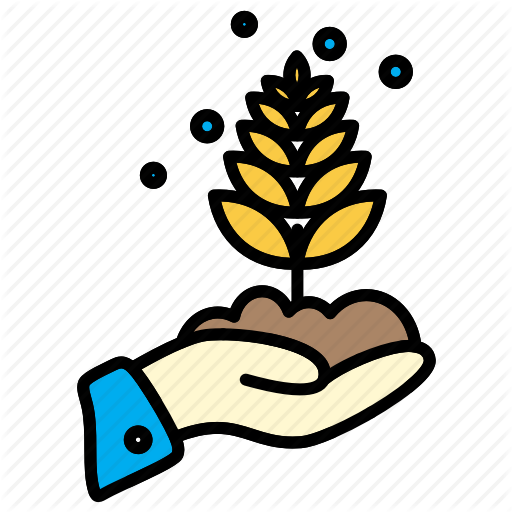 Agricultural, Plant, Wheat Icon