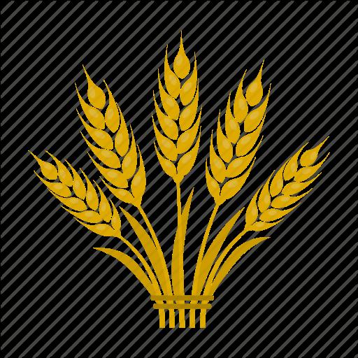 Bread, Farm, Grain, Growing, Plant, Spikelets, Wheat Icon