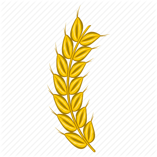 Agriculture, Barley, Beer, Cartoon, Food, Plant, Wheat Icon
