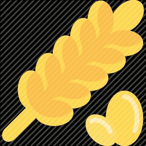 Corn, Food, Plant, Wheat Icon