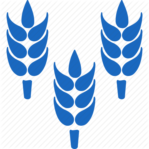 Rice, Illustration, Wheat, Transparent Png Image Clipart Free