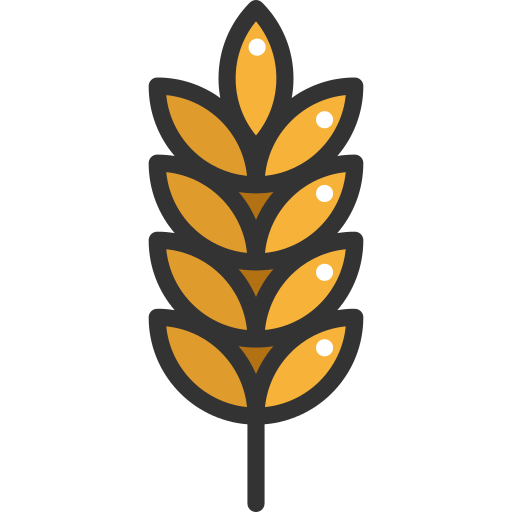 Vector Wheat Barley Transparent Png Clipart Free Download