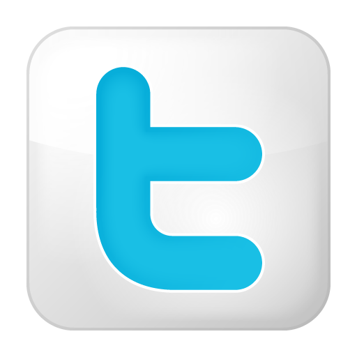 Social Twitter Box White Icon