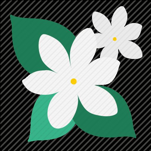 Bloom, Floral, Flower, Garden, Jasmine, Plant, Wildflower Icon