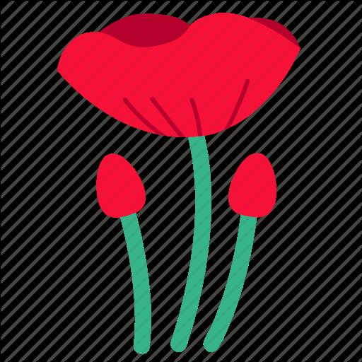 Floral, Flower, Flowers, Opium, Poppy, Red, Wildflower Icon