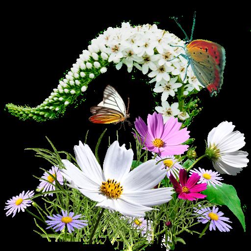 Wildflowers, Flowers Icon