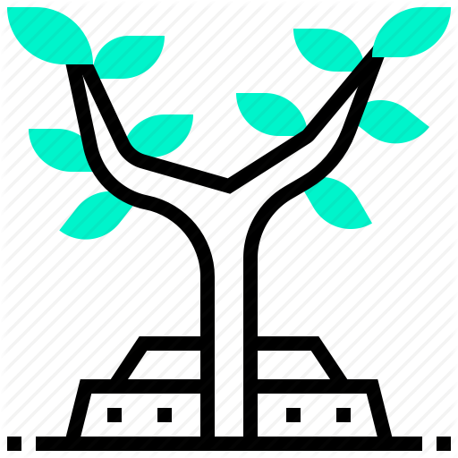 Branch, Plant, Tree, Willow Icon