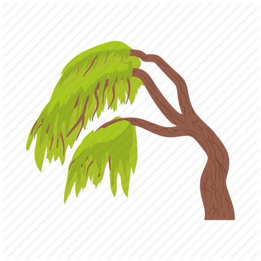 Cartoon, Environment, Green, Nature, Tree, Weeping, Willow Icon