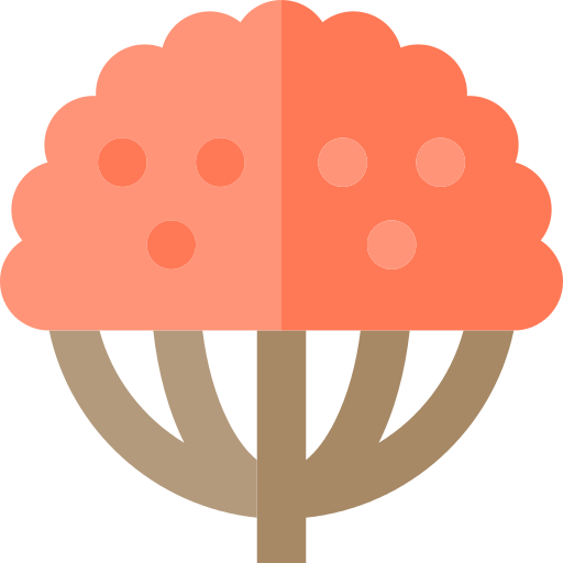 Willow Png Icon