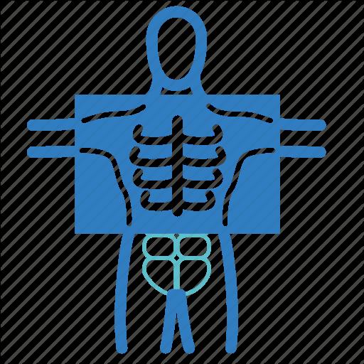 Diagnosis, Human Body, Medical, Patient, Radiology, X Ray, Xray Icon