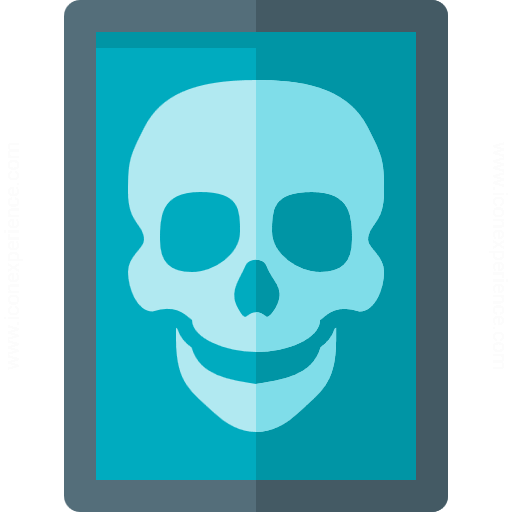 Iconexperience G Collection X Ray Icon