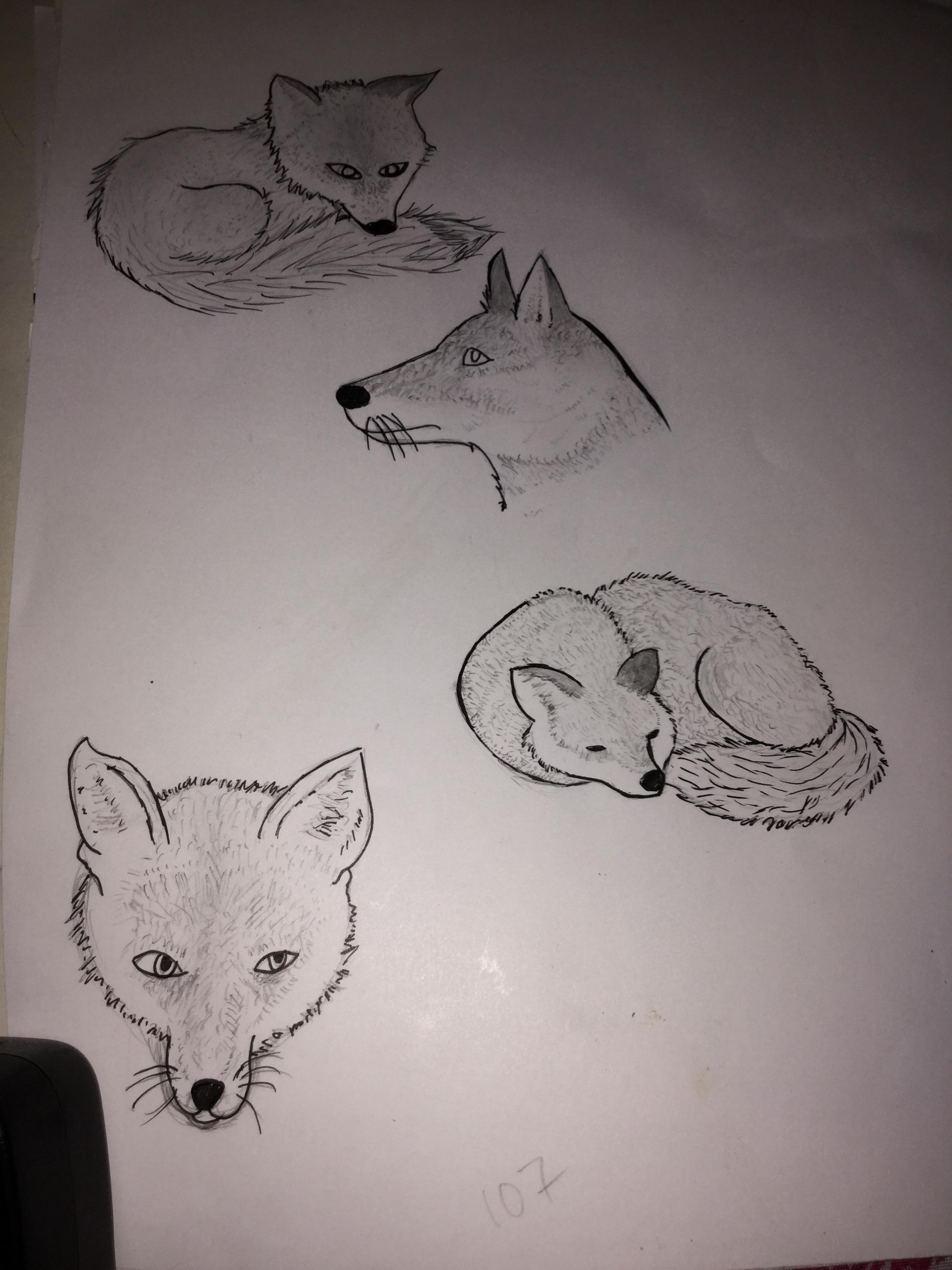 2448x3264 3 1 Year Old Drawings