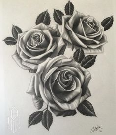 236x276 Black Rose Drawing Tattoo Black Rose Designs Rose Black And White