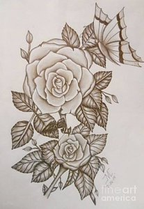 207x300 Nature Rose Drawings