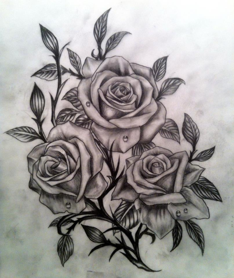 807x960 Rose Sketch By Calebslabzzzgraham