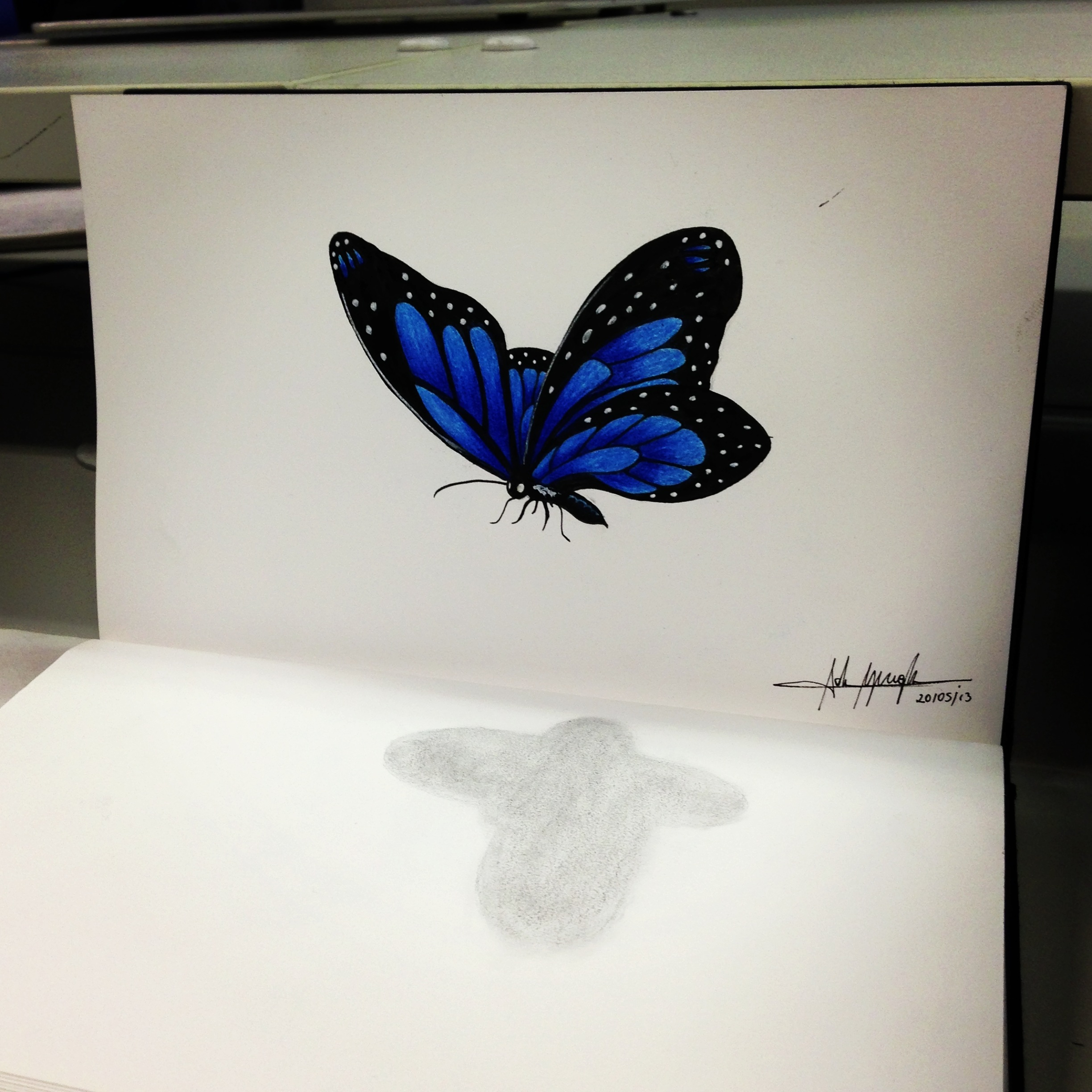 2448x2448 Butterfly 3d 3d Pencil Drawing Butterfly, 3d