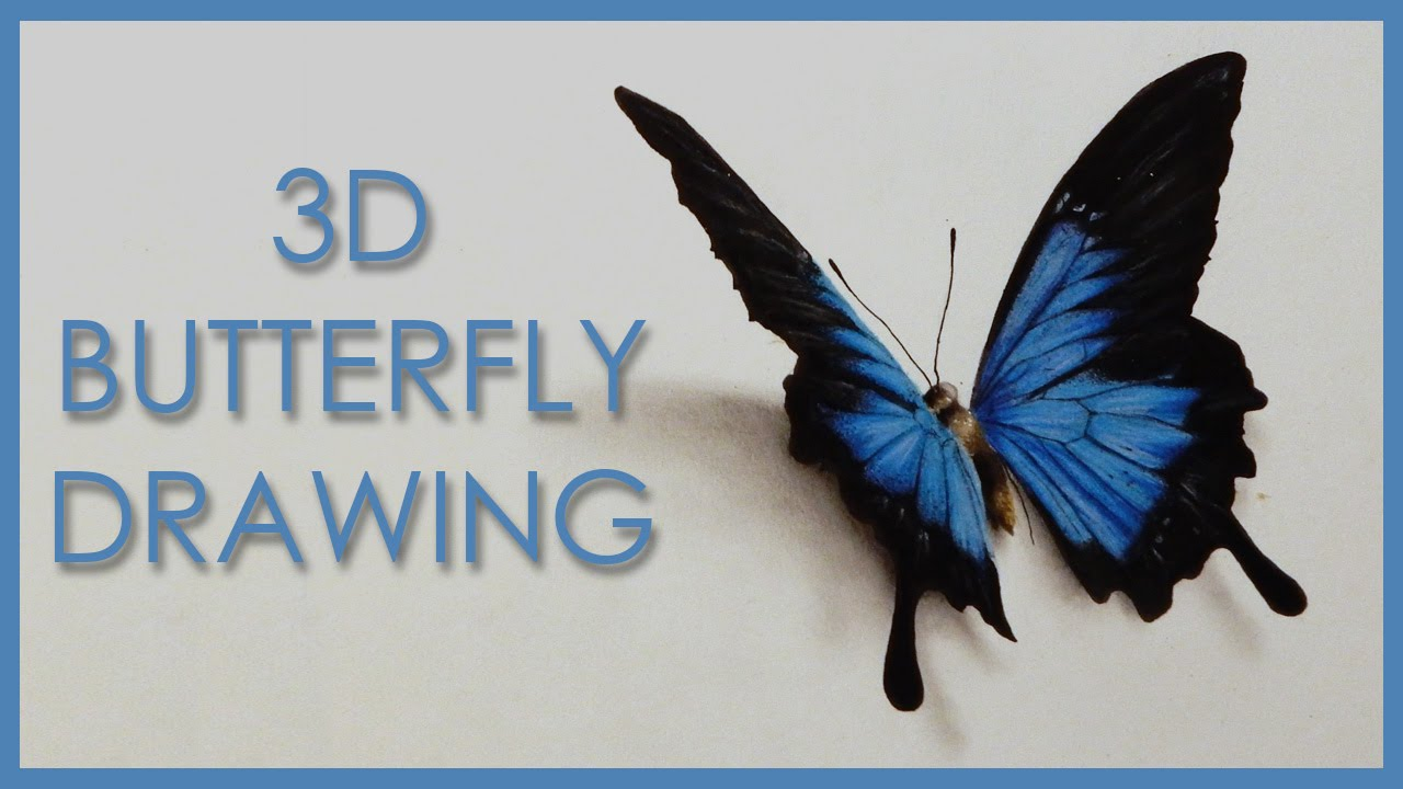 1280x720 Drawing A 3d Butterfly Anamorphic Illusion