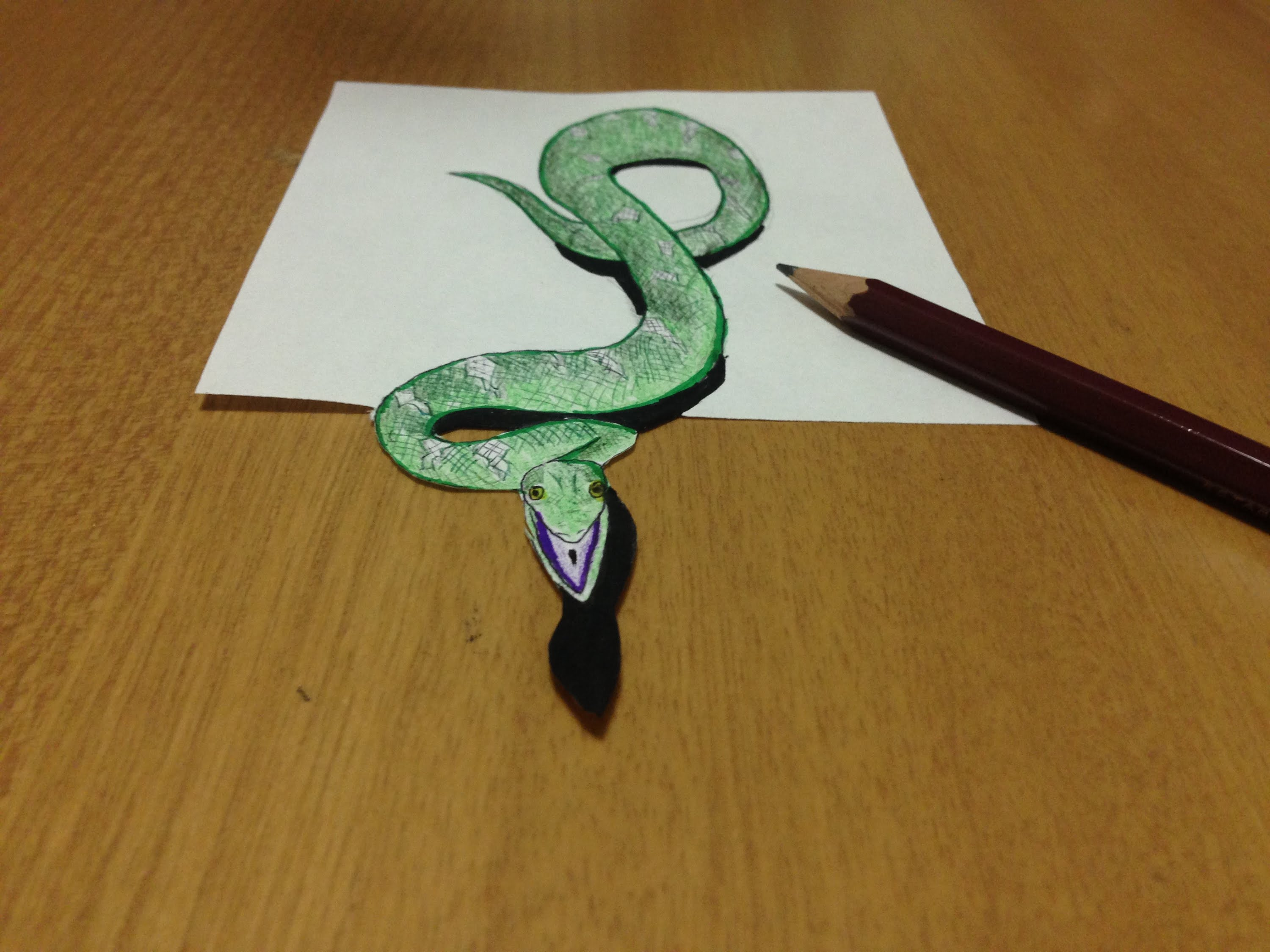 3d Drawing Snake At Getdrawingscom Free For Personal Use