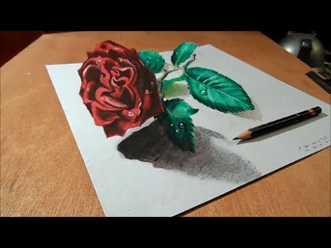 480x360 How To Draw Rose