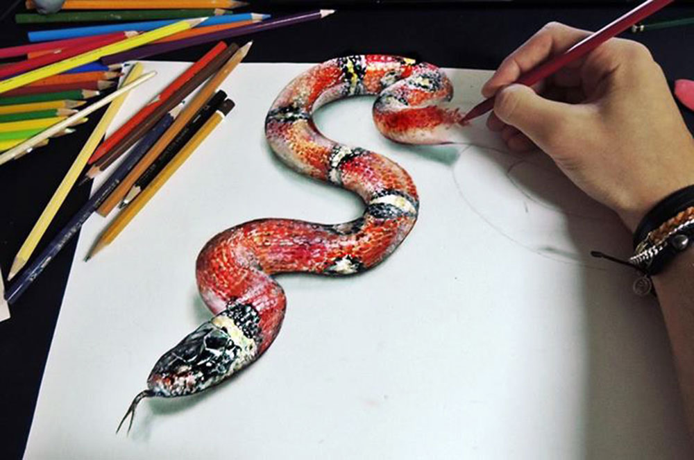 1000x663 3d Snake Illusions, Snake And Drawings