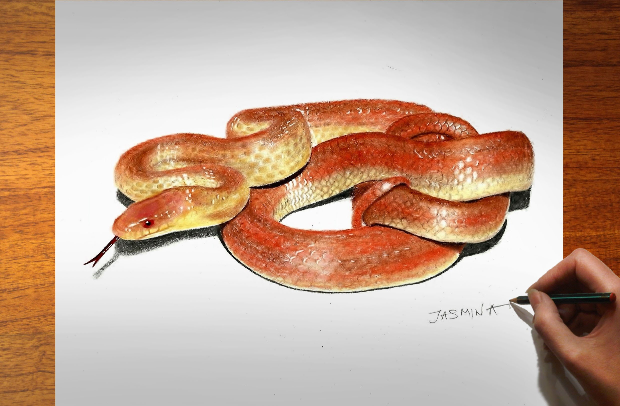 2481x1624 Color Pencil Drawing 3d 3d Colored Pencil Drawing Snake How