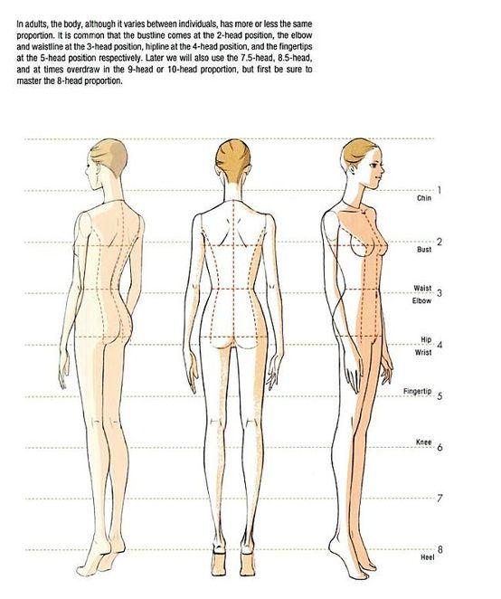 554x662 Body Drawing In 8 Head