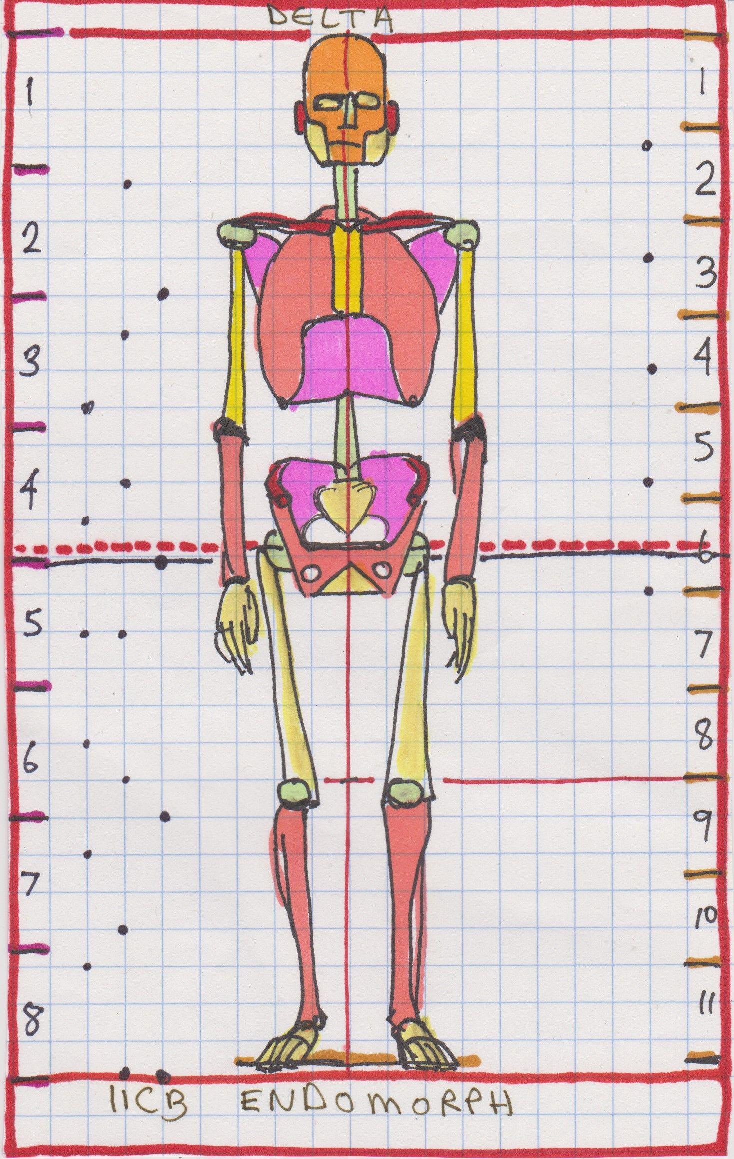 1469x2319 Skedidle Near 8 Head Figure Endomorphic Scale 11 Unit Cranial Box